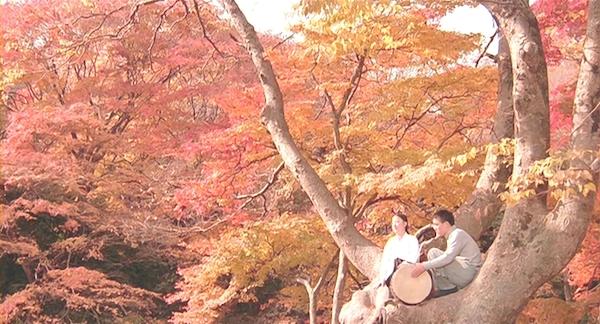 kb-seopyeonje-1